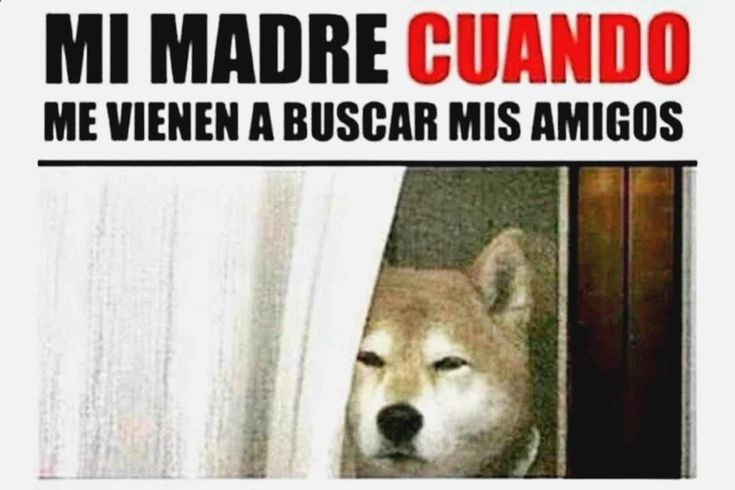 ✓✓✓ Descubre lo mejor en memes en español de r, chistes de pepito hojitas, memes one direction en español tumblr, gifs messi y chistes malos mexicanos. ➛➛ http://www.diverint.com/memes-facebook-no-sabemos-matematicas/