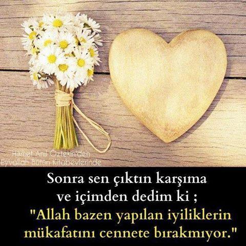 #elifgibisevmek #ask #aşk #tasavvuf #eyvallah #hikmetaniloztekin #instagram #kitap #siir