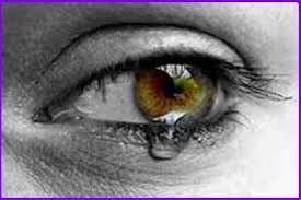 21 - EL QUIJOTE -  Su actitud causaba horror, sus ojos centellaban y sus labios se agitaban en convulsivo temblor