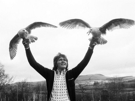 Billy Fury Ex Pop Star on the Farm with Two Gulls, February 1977 Photographic Print - AllPosters.co.uk