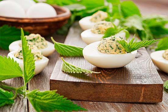 Салат из крапивы — полезные рецепты, быстро и выгодно