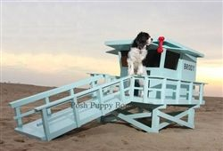 Custom Exclusive Lifeguard Stand Dog House- Beds, Blankets & Furniture - Furniture Style Beds Posh Puppy Boutique