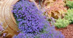 How to Add Whimsy to Your Garden