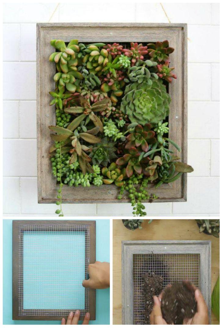 les 25 meilleures id es concernant succulentes suspendu sur pinterest mur de plantes grasses. Black Bedroom Furniture Sets. Home Design Ideas