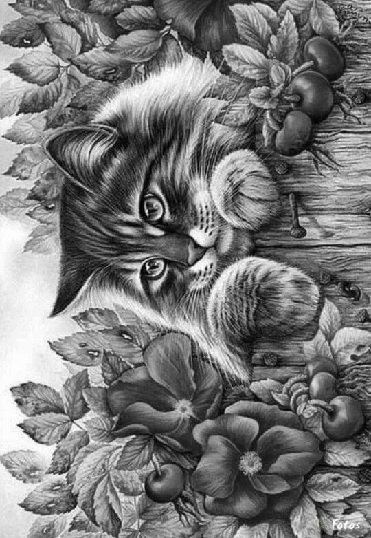 grey scale coloring pages - photo#39