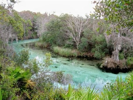 Weeki Wachee Kayak Rentals - Home - Weeki Wachee, FL