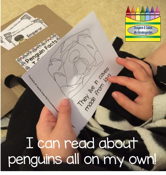 Lets Read About Penguins!  FREE book- Emperor penguins available for download!