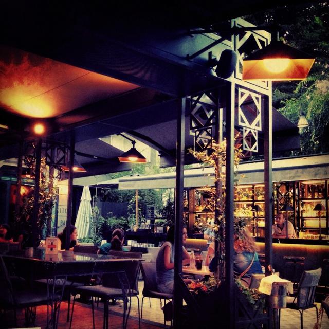 The New Kitchenette Garden