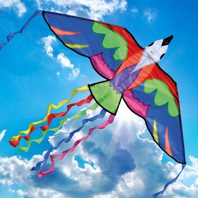 In India, one of the popular festivals is Makar Sankranti, or Basant.  HD Wallpapers Of International Kite Festival In Gujarat.