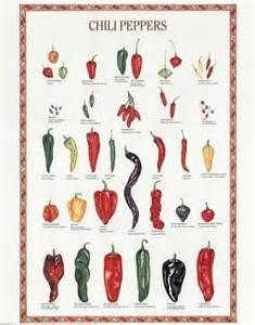 The Chili Pepper Poster Google Search Types Of Chili Peppers Stuffed Peppers Stuffed Hot Peppers