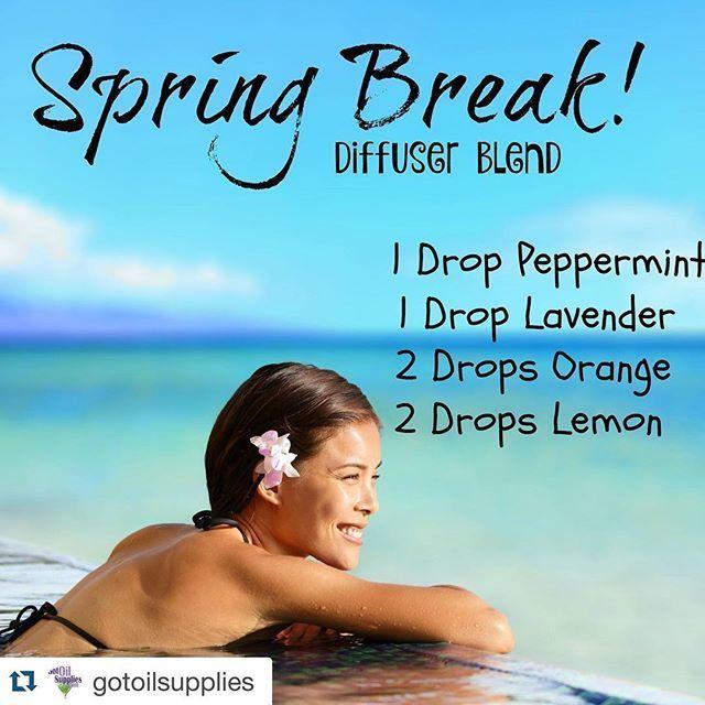 Spring break                                                                                                                                                      More