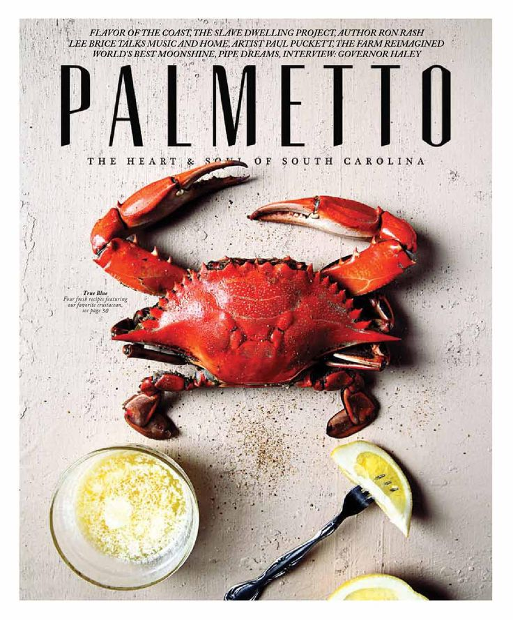 Palmetto Magazine Spring/Summer 2015  A celebration of the spirit of South Carolina, PALMETTO Magazine is the authority on our distinctive style of life-documenting her beauty and charm and giving our readers a novel look into the Palmetto State's history and culture as well as stirring narrations of the places and personalities that make South Carolina so captivating.
