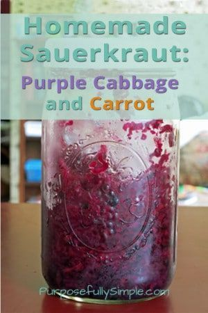 Homemade-Sauerkraut-Recipe-Purple-Cabbage-and-Carrot---Purposefully-Simple-