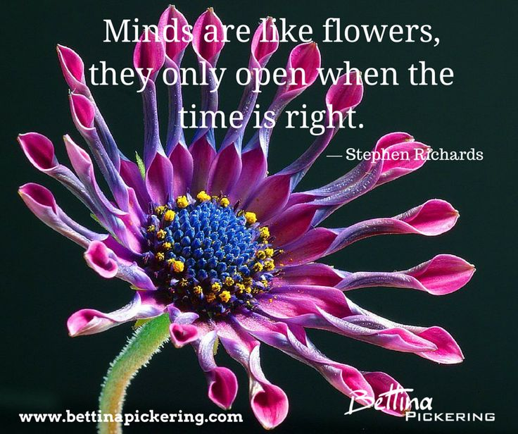 Minds are like flowers, they only open when the time is right. — Stephen Richards #mindfulness #purpose