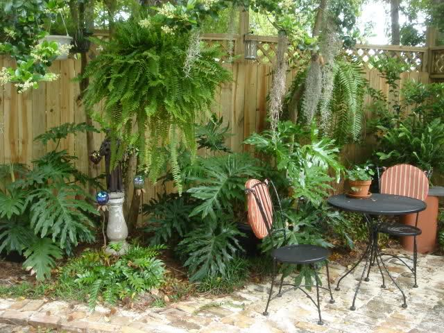 New orleans courtyard gardens yard and garden pictures for Better homes and gardens courtyard ideas