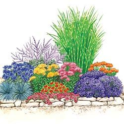 drought tolerant sun garden light full sun to partial shade you will get the following - Flower Garden Ideas Partial Sun