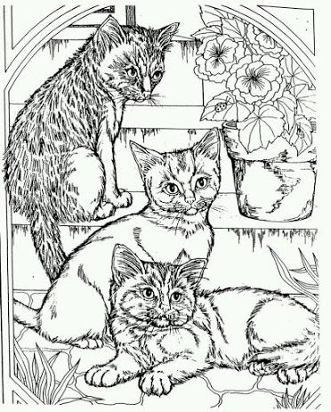 443 best coloring cats images on Pinterest Coloring books - fresh coloring pages about nurses