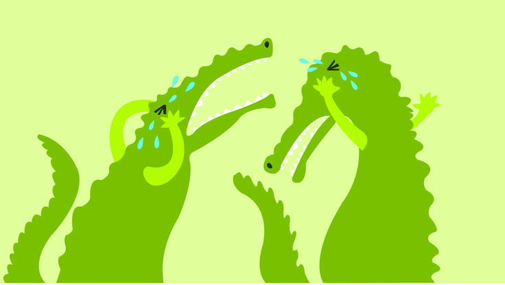 Crocodiles don't cry. Science centre project for children in Quito, Ecuador.   Contractor: Vpormil.  Illustration. 2012