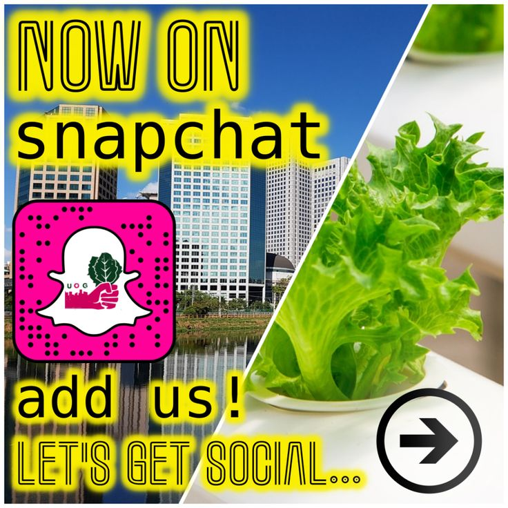 Were on SNAPCHAT! [Lets Get Snapping] http://ift.tt/2zabcEi  We want to be where our fans and fellow gardeners are so weve headed over to snapchat and created an account! We hope youll share all of your awesome gardening successes/tips/and learning experiences with us over there.  Lets be friends! Just use the snap code below to quickly and easily add us andsee more great content from us everyday!