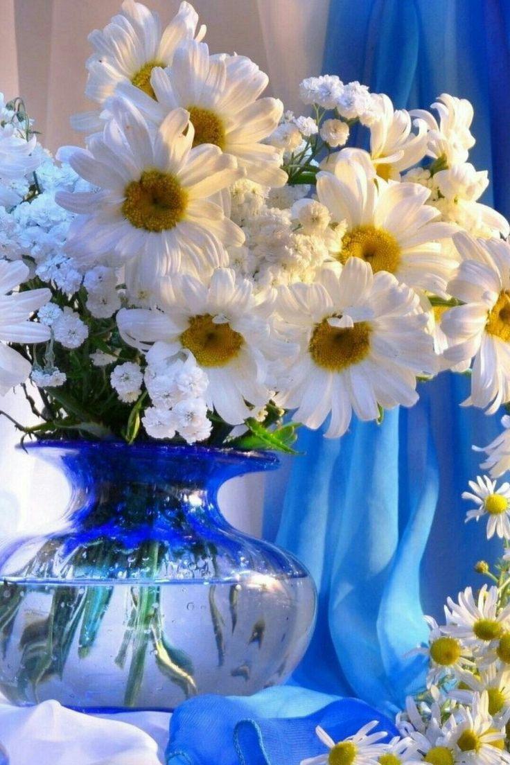 картинка вертикальная цветы доброе утро так камень