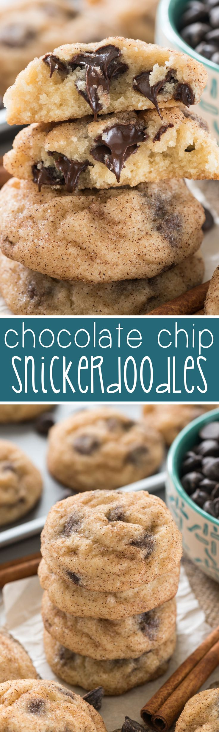 Chocolate Chip Snickerdoodles - this easy snickerdoodle recipe is FILLED with chocolate chips. We made these twice in two days! Chocolate goes so well with snickerdoodle cookies!