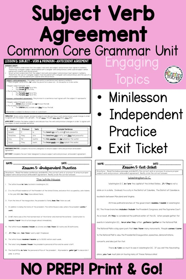3rd Grade Grammar Activities Printables Subject Verb Agreement Subject And Verb Grammar Activities Grammar Printables [ 1104 x 736 Pixel ]