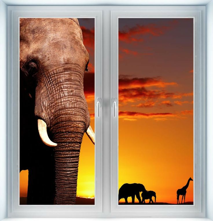 Majestic Wall Art - African Safari Instant Window, $44.00 (http://www.majesticwallart.com/instant-windows/african-safari-instant-window)