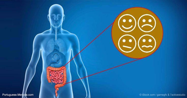 O estudo mostra que as bactérias do intestino podem ajudar a prevenir problemas de comportamento, outro motivo por que você deve pensar em tomar probióticos.