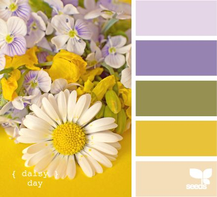 {Daisy Day} purple & yellow combo!: Color Palettes, Design Seeds, Color Combos, Bedroom Colors, Color Combinations, House Idea