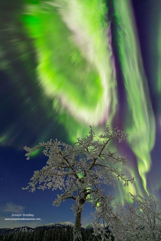 SpaceWeather.com -- News and information about meteor showers, solar flares, auroras, and near-Earth asteroids