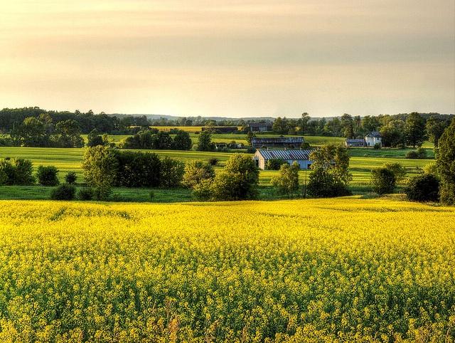 Rural Ontario, Canada