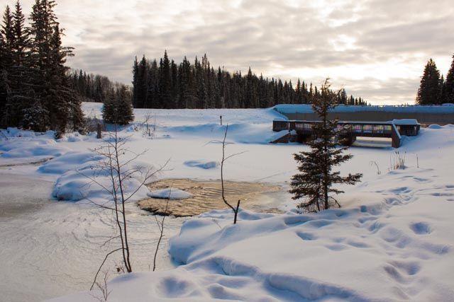 Prince Albert National Park, February 14, 2014. http://www.kyanitephoto.com