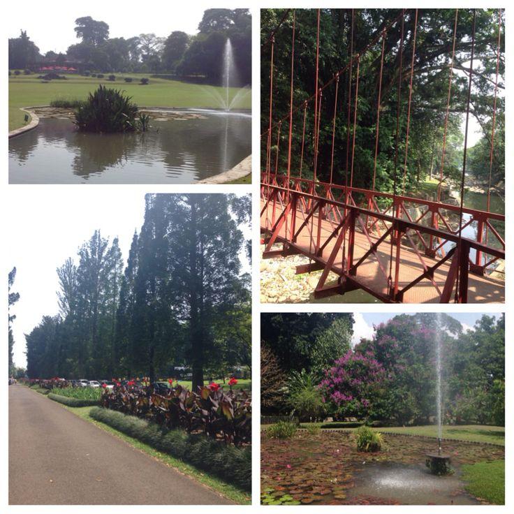 Kebun Raya Bogor, Indonesia