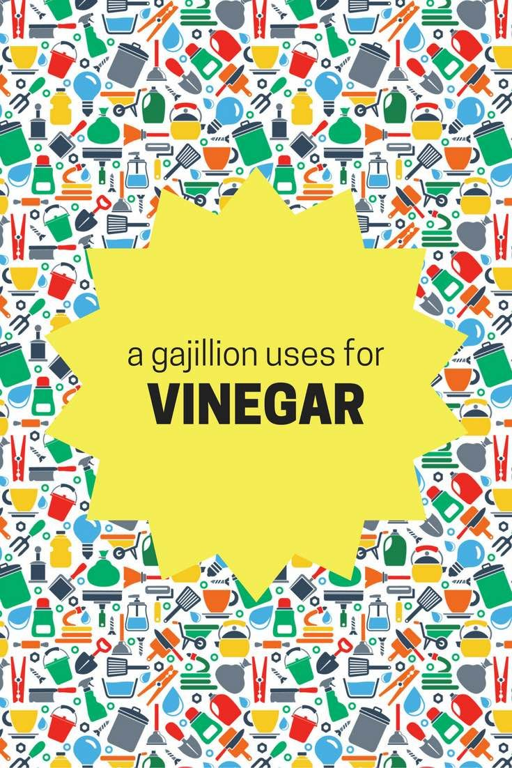 a gajillion uses for VINEGAR - great list