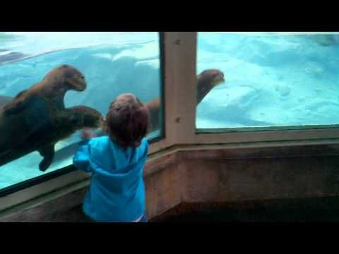 This little girl is really enjoying her trip to the aquarium! funny