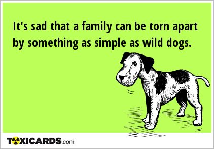 It's sad that a family can be torn apart by something as simple as wild dogs.