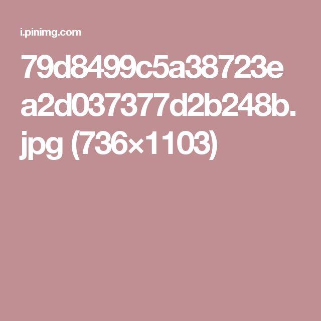 79d8499c5a38723ea2d037377d2b248b.jpg (736×1103)