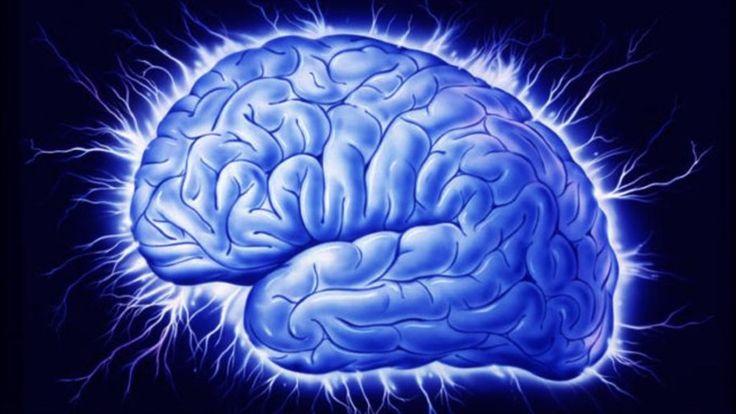 Η φαιά ουσία των ενηλίκων «μπορεί να αυξάνεται όπως στα παιδιά»  Δεν μπορείς να διδάξεις νέα κόλπα σε ένα γέρικο σκυλί, λέει μια αγγλική παροιμία. Κι όμως, Κινέζοι ερευνητές διαπιστώνουν ότι ο εγκέφαλος των ενήλικων ανθρώπων μπορεί να εκπαιδεύεται ταχύτατα σε νέες δραστηριότητες αυξάνοντας τη #φαιά_ουσία του όπως τα μικρά παιδιά.   Φαιά ουσία ονομάζεται το εξωτερικό, γκρίζο στρώμα των #εγκεφαλικών_ημισφαιρίων, το οποίο περιλαμβάνει τα κυρίως σώματα των #νευρώνων, καθώς και τις απολήξεις τους…
