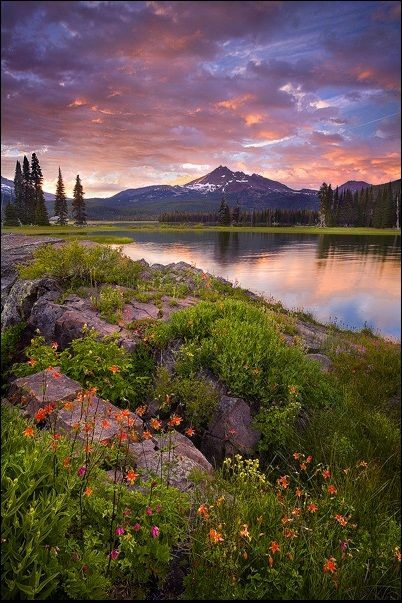 Sparks Lake garden at sunset, Bend, Oregon