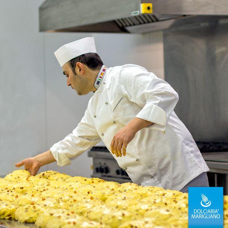 Il nostro Chef Alessandro #Marigliano sta preparando i #Panettoni per il vostro #Natale  Cura #artigianale e passione per i #Dolci rendono il nostro #panettone una gioia per gli occhi e il palato! #cake #foodie #foodporn #madeinitaly #imarigliano #xmas