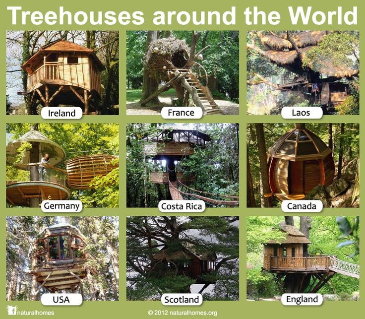 No matter where you are from, one of the things we all seem to have in common is we all love treehouses. You can find all of the treehouses in this collection plus many others in this Natural Homes www.naturalhomes.org/treehouses.htm