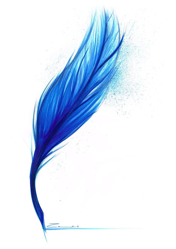 Blue Feather Sketch - By Cesar Zanardo