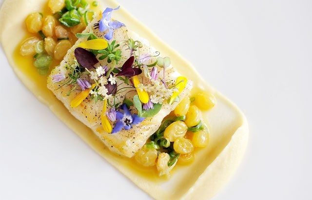 Halibut fillet glazed with lardo, parsnip purée and a verjuice and spring onion sauce