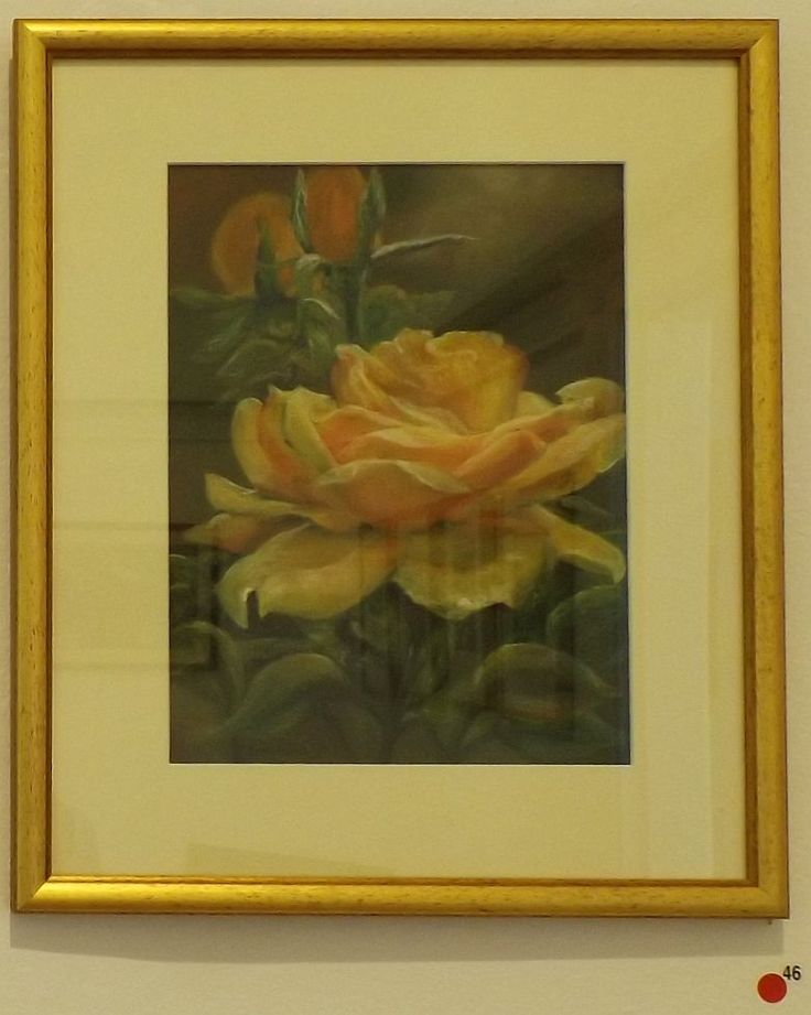 Artist Debby Gairns 'The Yellow Rose' Pastel 51 x 51cm - Allsorts exhibition 19 March - 12 April 2015, Strathnairn Arts