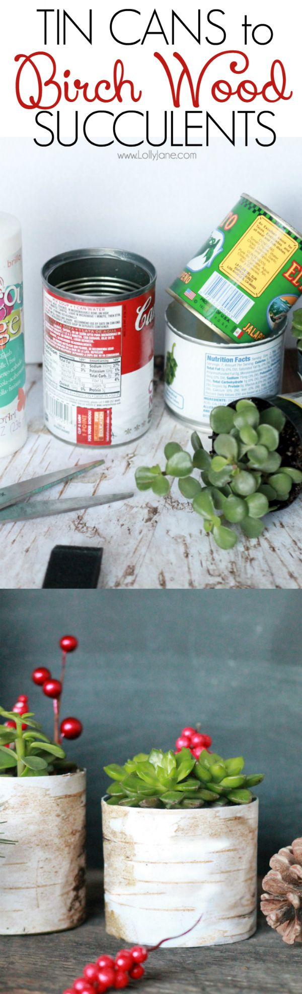 Upcycle tin cans into pretty succulent planters. | Easy birch wood tin can planter. Adorable fall decor, Thanksgiving table setting ideas or Christmas decor.