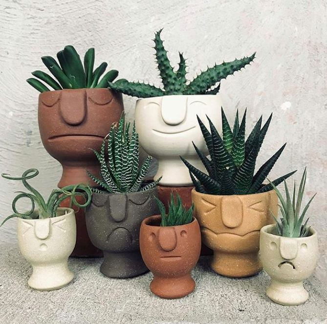 🌿 Photo from IG @planter_me