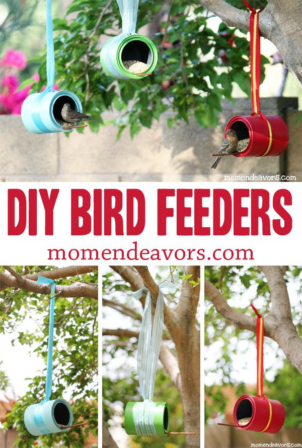 DIY Bird Feeders - Easy to make & a great pop of color for the yard!