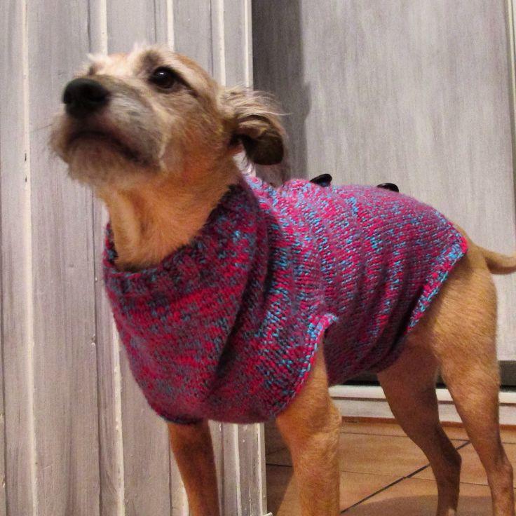 Nowy sweterek , marsz na spacerek / new sweater , march for a walk