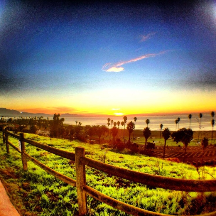 Morning at Santa Barbara City College (SBCC)