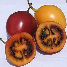 Tamarillo, also known as tree tomato